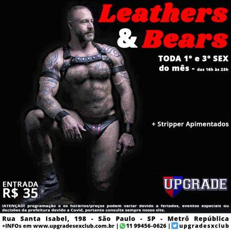 Leathers & Bears